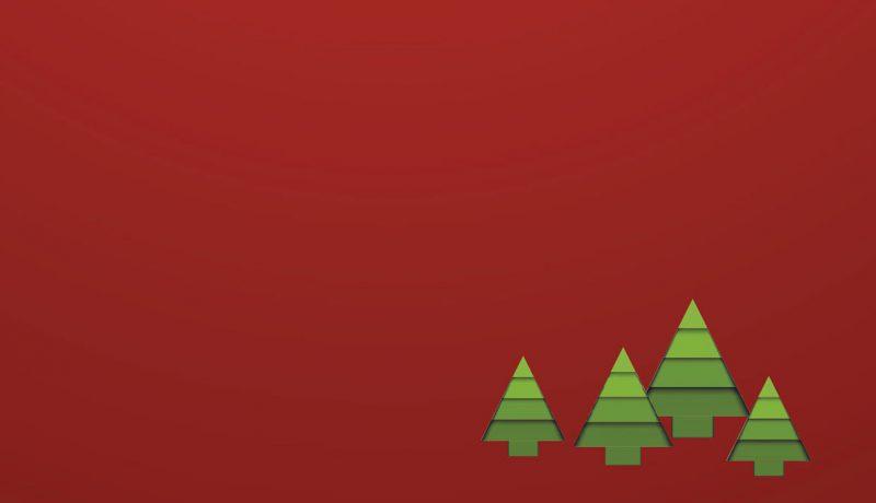 Weihnachtsbaummarkt 2015